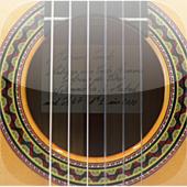 Icono Guitar Training